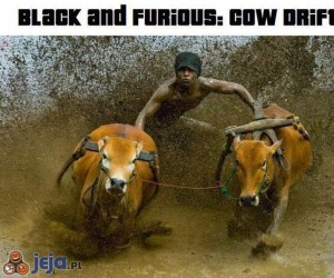 Black and Furious