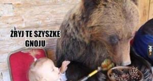 Niedźwiadek niejadek