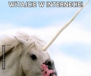 Witajcie w Internecie!