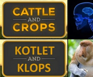 Znana gra rolnicza