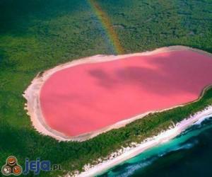 Różowe jezioro Hillier w Australii