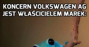 VW to nie wiocha, VW to bogactwo!