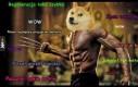 Wolverine WOW