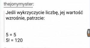 Polski i matematyka łączą siły