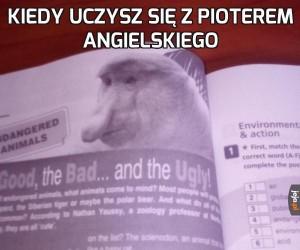 Angielski Janusz