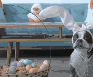 Wielkanocny pieseł