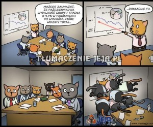 Dlatego koty nie robią biznesów
