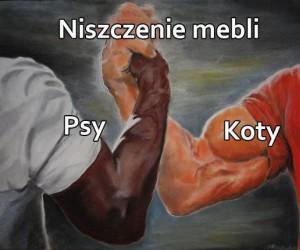 Kto wygra bitwę?