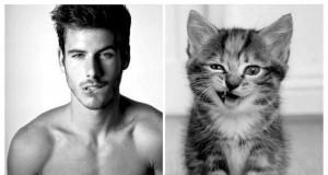 Modele vs. Koty 2