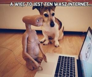 A więc to jest ten wasz internet...