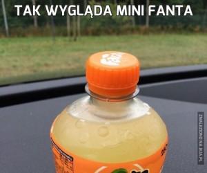 Tak wygląda Mini Fanta