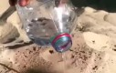 Rozgrzany piasek