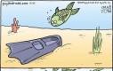 Znaleziona płetwa