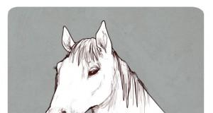 Smok czy koń?