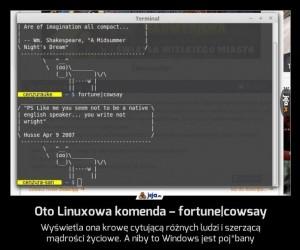 Oto Linuxowa komenda – fortune|cowsay