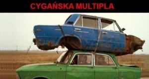 Cygańska multipla