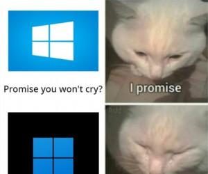 F dla Windowsa 10