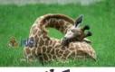 Uwielbiam się przytulać...