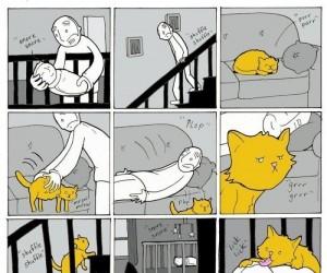 Życie z dzieckiem i kotem