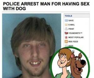 Aresztowany za obcowanie z psem