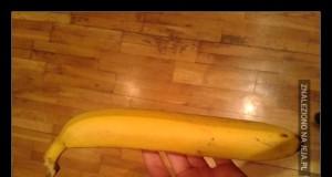 """""""Spadaj na drzewo prostować banany"""""""