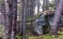 Las bierze głęboki oddech