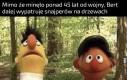 Ernie, oni mogą być wszędzie