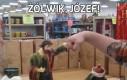 Żółwik, Józef!