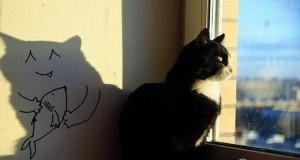 Marzenia kota
