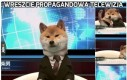 Wreszcie propagandowa telewizja