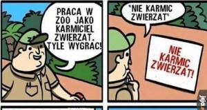 Wymarzona praca w zoo