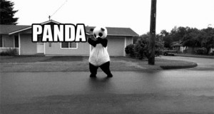 Panda, panda, panda.... ?!