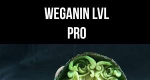 Sztuka wegańska