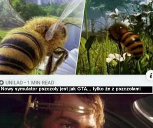 Pszczoły, co o nich sądzicie?