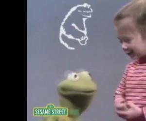 Kermit nie wytrzymał
