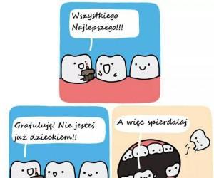 Rozmowy między zębami