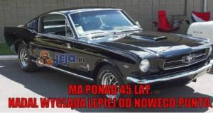 Stary Mustang