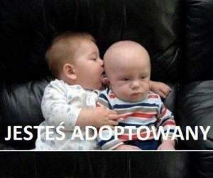 Jesteś adoptowany