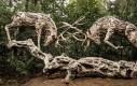 Majestatyczne drewniane jelenie