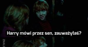Co tam u Harry'ego?