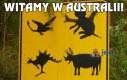 Witamy w Australii!