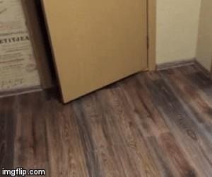 Gdy nie chce Ci się wstawać, żeby zamknąć drzwi...