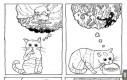O czym myślą koty