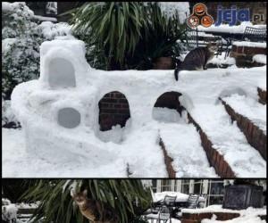 Śniegowy fort dla kota
