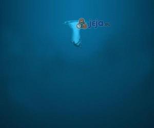 W głębinach czai się niebezpieczeństwo