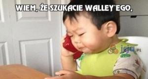 Wiem, że szukacie Walley'ego,