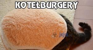 Kotełoburgery