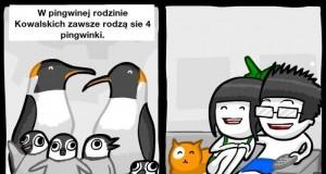 Mroczna strona pingwinów