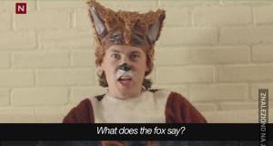 Co mówi Foxy?