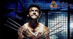 Szaszłyki a'la Wolverine